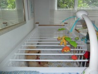 The AB cot with bars to keep you in.